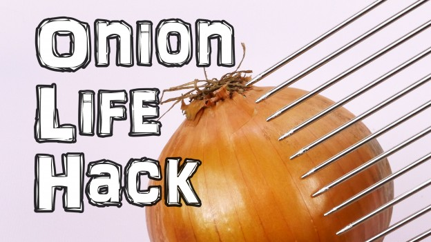 "How You ""Should"" Cut an Onion Life Hack"